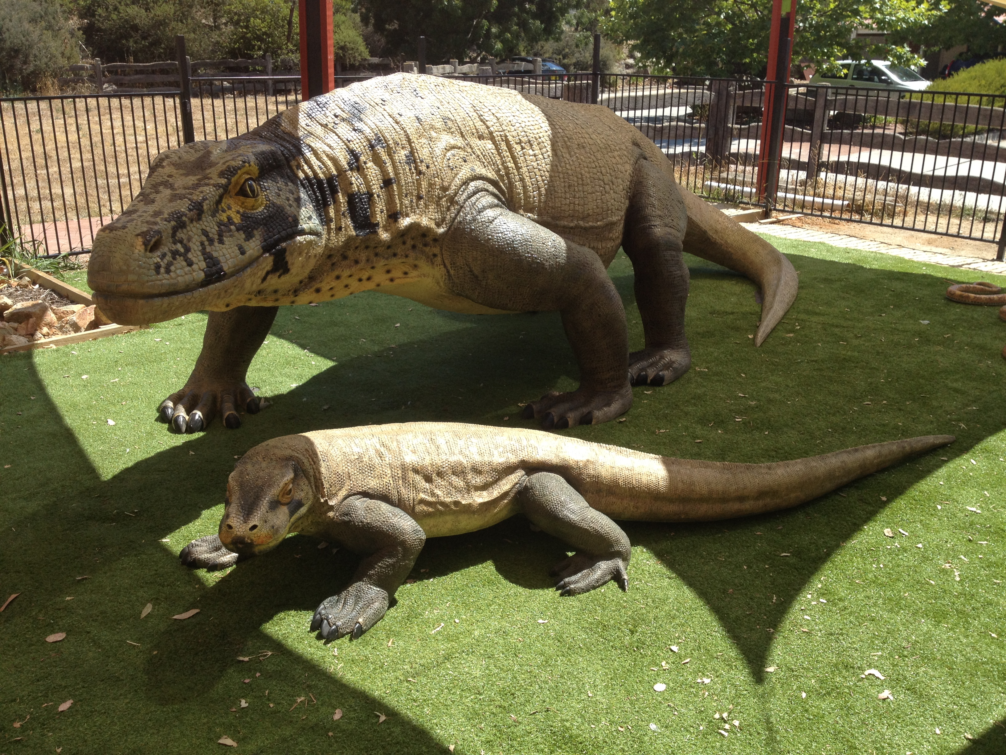 e3702eaef4fbf3 Reptiles Inc   Canberra Reptile Zoo