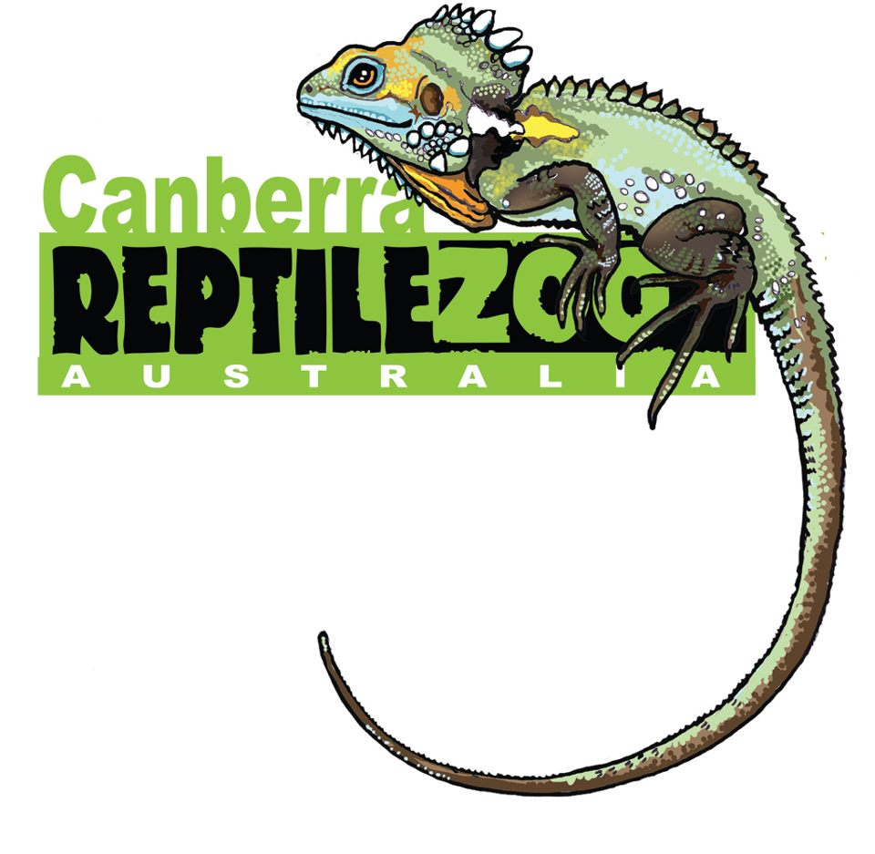 Image result for reptile inc canberra